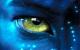 jjferreira avatar