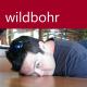 wildbohr avatar