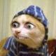 AGM avatar