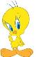 spam avatar