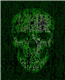 ISD avatar
