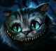 Cat Cheshire avatar