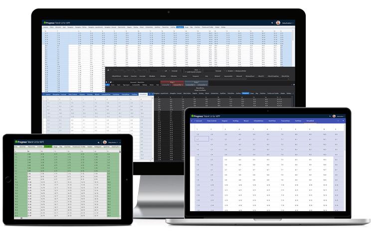 Telerik UI for WPF - Virtual Grid CTP