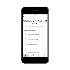 Mint asks every user: what are your financial goals? The walkthrough helps them accomplish them.