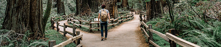 choose_path