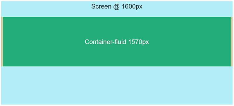 container-fluid