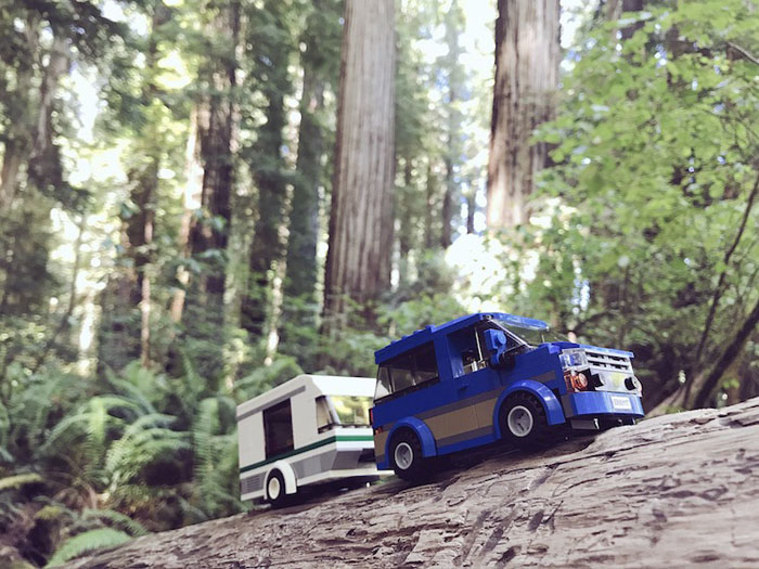the camper in the Endor trees