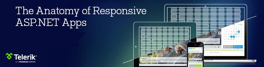 responsive_dotnet_header