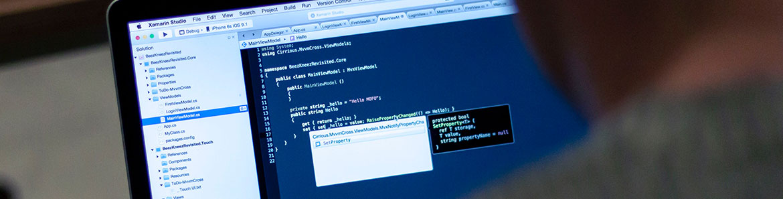 softwaredev_header