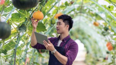agworks-builds-complex-crop-insurance-app-in-record-time-with-telerik-ui-solutions-thumb