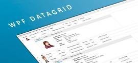 WPF DataGrid Telerik - Thumbnail Image small