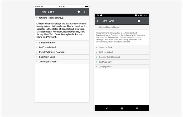 Telerik UI for Xamarin -Accordion Control - Overview Image
