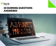 20 Burning Questions Answered PDF