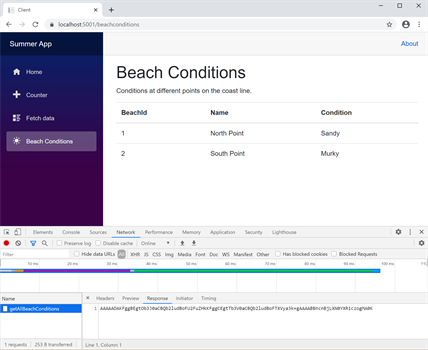 Beach Conditions page with Network tab showing Binary Data