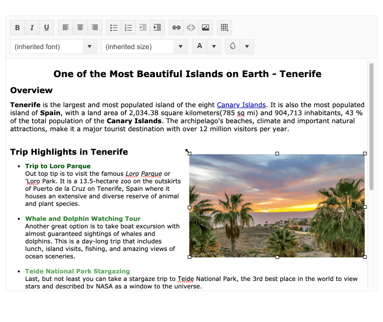 An editor window laid out with text and an image brings up the little resizing squares around the image.