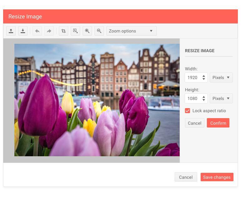 Telerik UI for ASP.NET Core Image Editor Dialog Resize