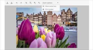 Telerik UI for ASP.NET Core ImageEditor