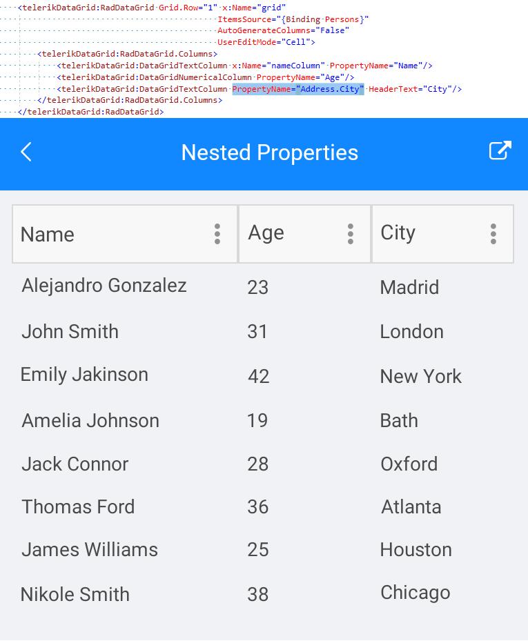 Telerik UI for Xamarin - DataGrid - Nested Properties Image