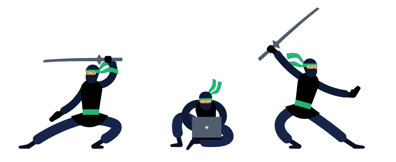 Telerik Ninja