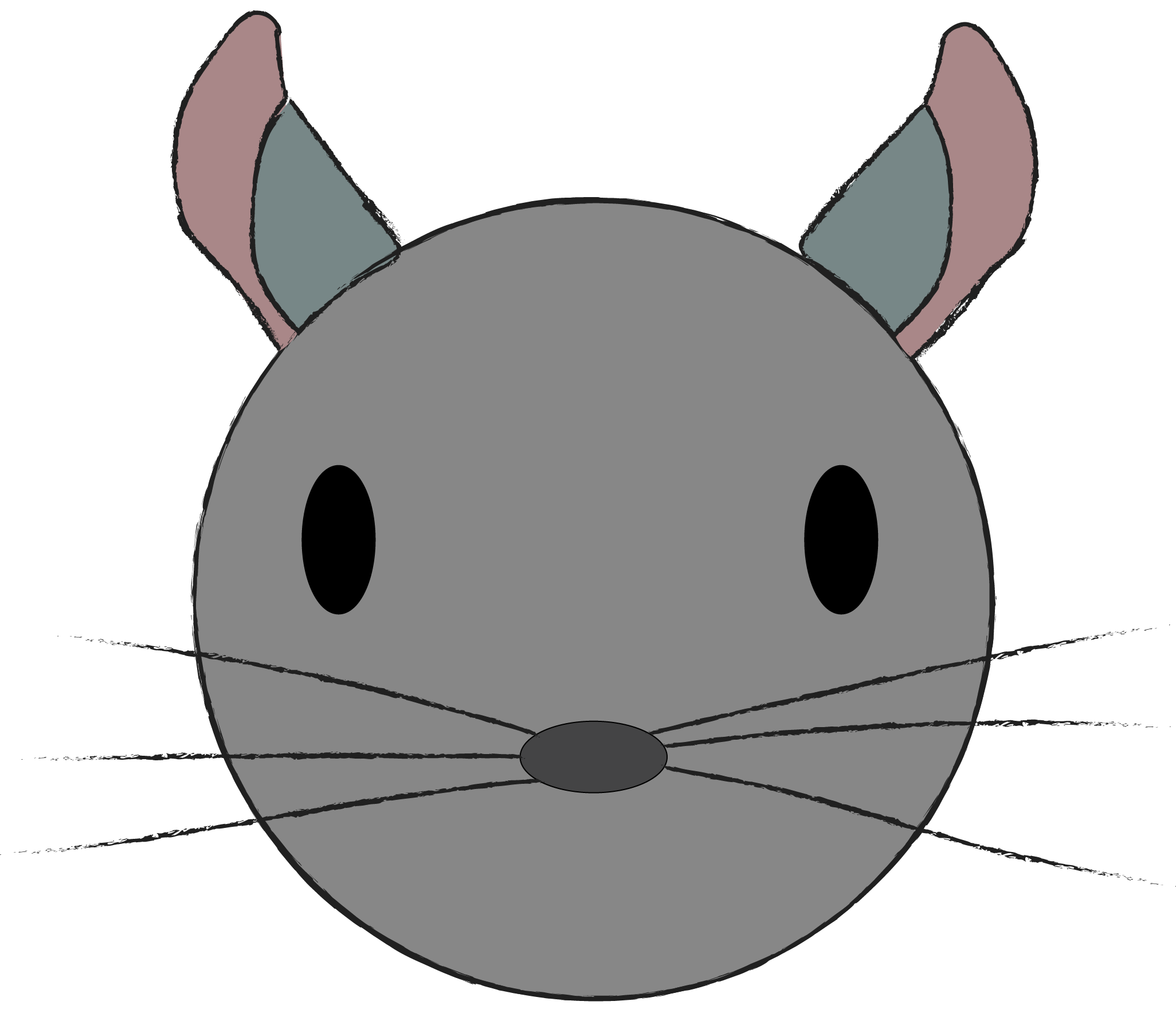 Normal Chinchilla