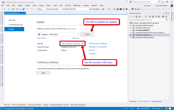 Visual Studio Publish Overview page