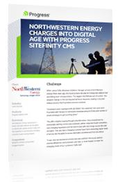 PDF_Small_Website_Image_Telerikcom