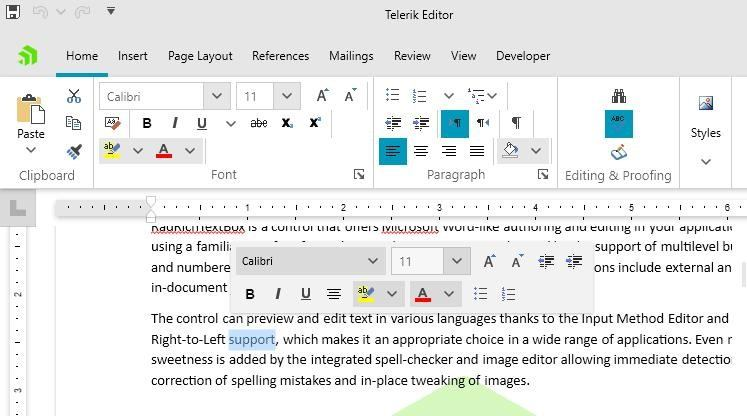 In the Telerik Editor window, a word is selected, and the mini toolbar that pops up has a gray background.