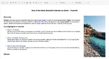 Telerik UI for Blazor Editor