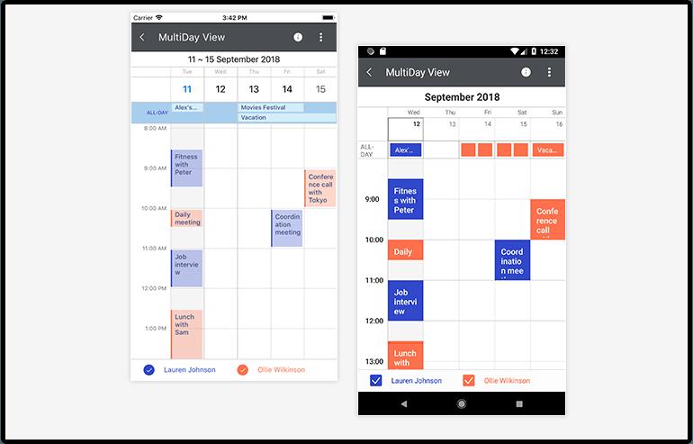 Telerik UI for Xamarin - Calendar - MultiDayView Image