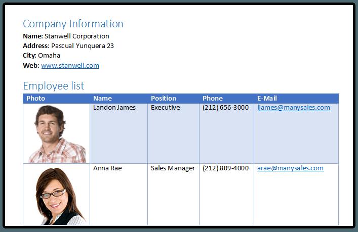 Telerik UI for ASP.NET MVC WordsProcessing - Bookmarks and Hyperlinks