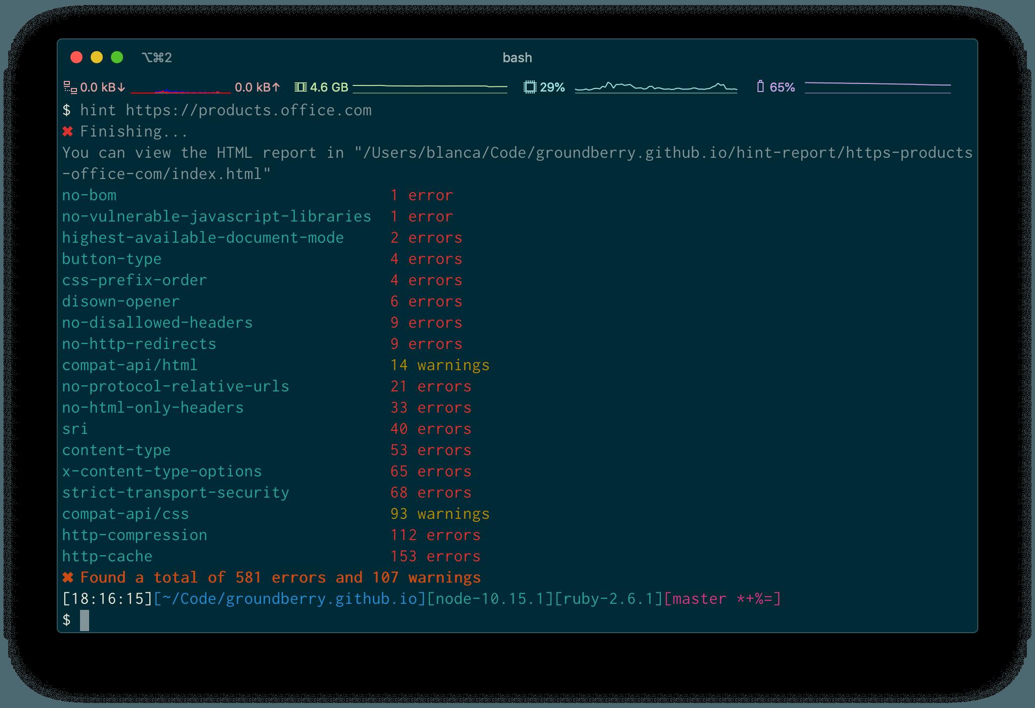 webhint-terminal