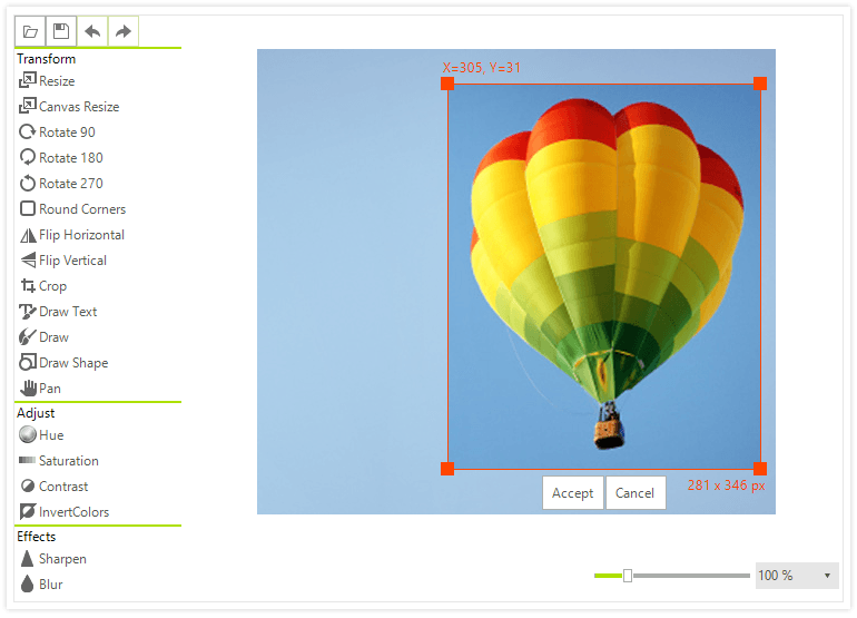 Telerik UI for WinForms - New Image Editor Control - Large Image