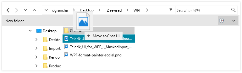 Telerik UI for WPF - File Dialogs - Drag and Drop Image