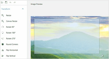 Telerik UI for WPF - ImageEditor - Selection Small image