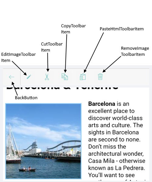 Working with images in the Xamarin RichTextEditor - toolbar shows BackButton, EditImageToolbarItem, CutToolbarItem, CopyToolbarItem, PasteHtmlToolbarItem, RemoveImageToolbarItem