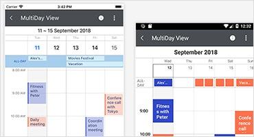 Telerik UI for Xamarin - Calendar - MultiDayView Small Image