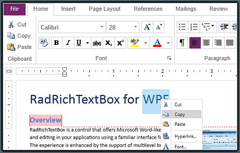RichTextBox Control - Telerik UI for WPF Components - Telerik