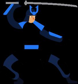 ninja-fiddler
