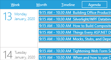 Telerik UI for Silverlight - Agenda View