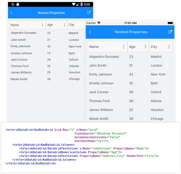 Xamarin DataGrid Nested properties Support