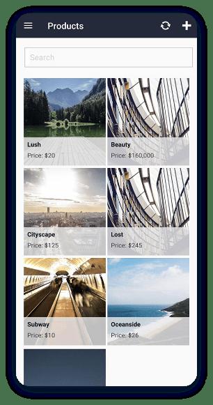 screenshot-products-1