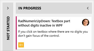 Telerik UI for WPF - TaskBoard Control