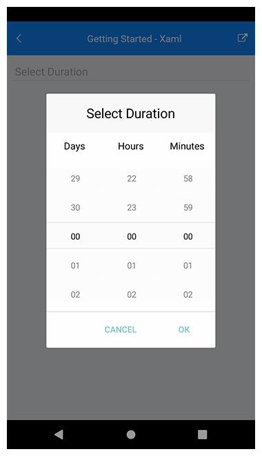 Telerik UI for Xamarin - String Format for TimeSpanPicker