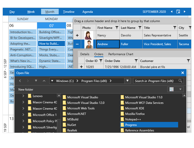 Office 2019 theme for WPF