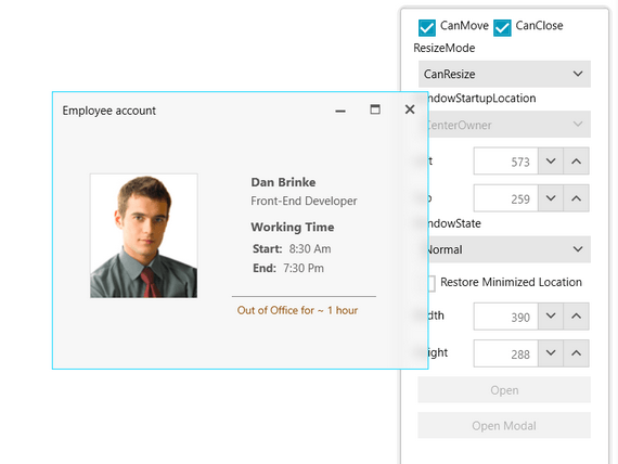 Telerik UI for WPF Window