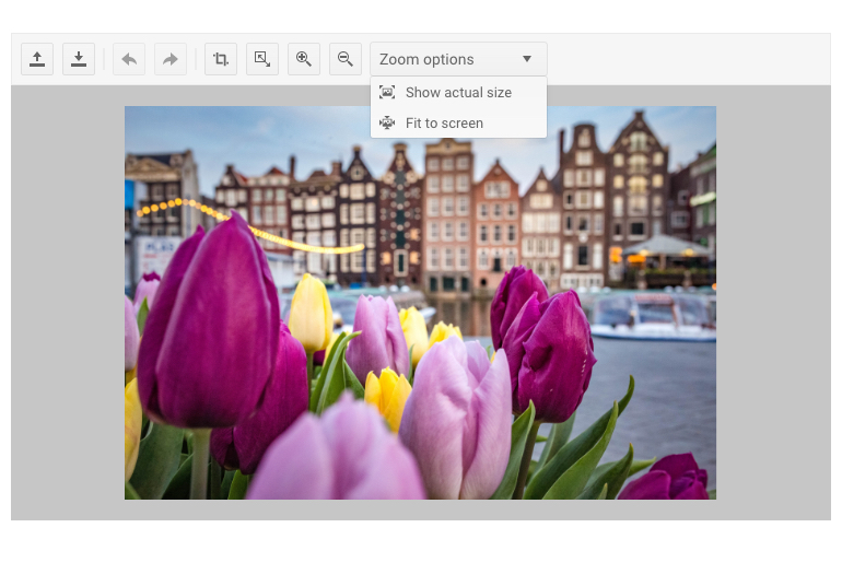 The Kendo UI for jQuery Image Editor Component with an image of tulips with amsterdam in the background